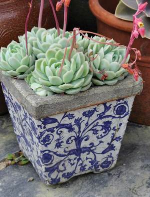 Blue & White Ceramic Pots Set of 3