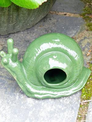 Snail slug beer trap