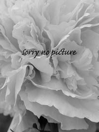 Sorry-no-picture