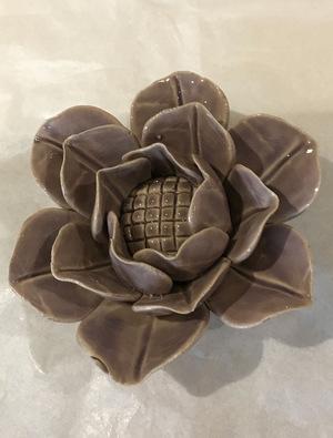 Coral 4 Lotus Lilac
