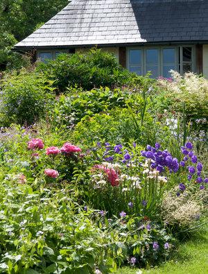 Garden Open Day 9th June 2020