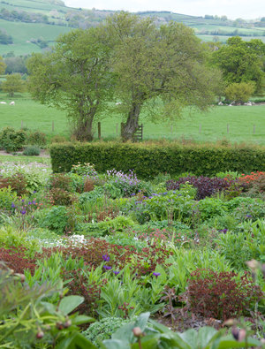 Garden Open Day 28th May 2020