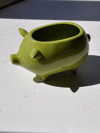 Ceramic Pig Pot Chartreuse