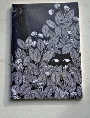 Notebook 'Observation at Night'