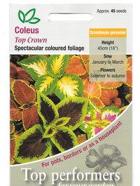 Coleus-top-crown-seeds