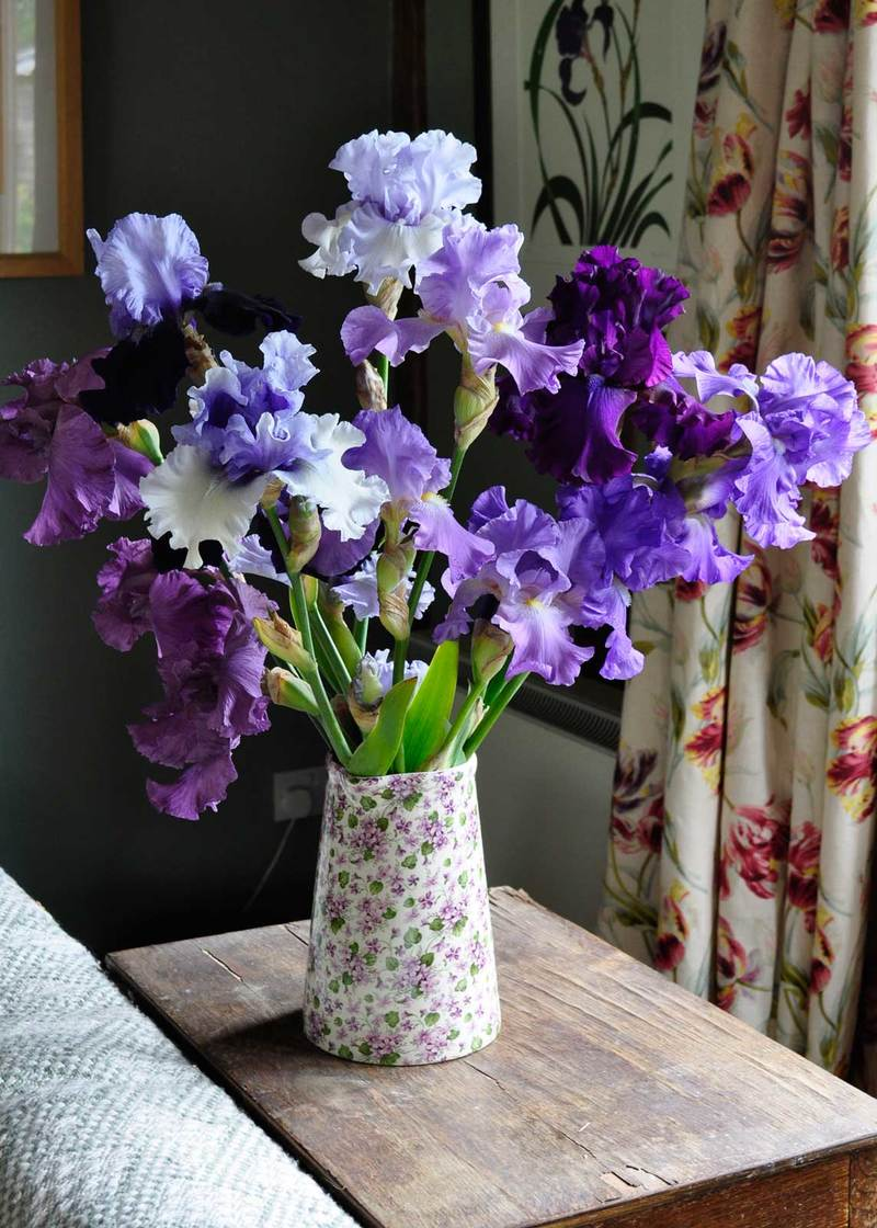 Perennials for cutting claire austin cut flowers with scent reviewsmspy